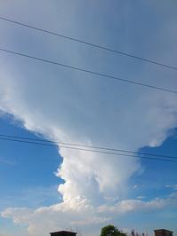 110913saiten-雲1.jpg