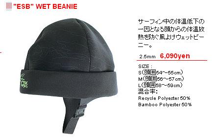 110107esb-beanie.jpg