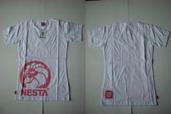 NESTA-100417-14-L.jpg